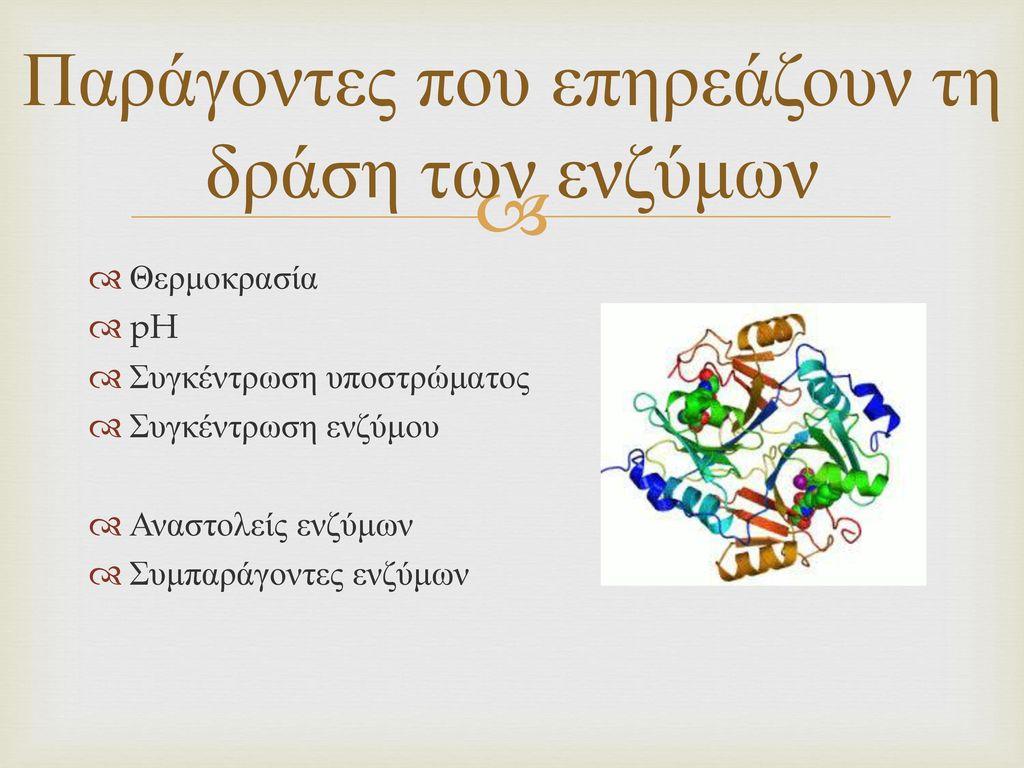 Παράγοντες που επηρεάζουν τη δράση των ενζύμων
