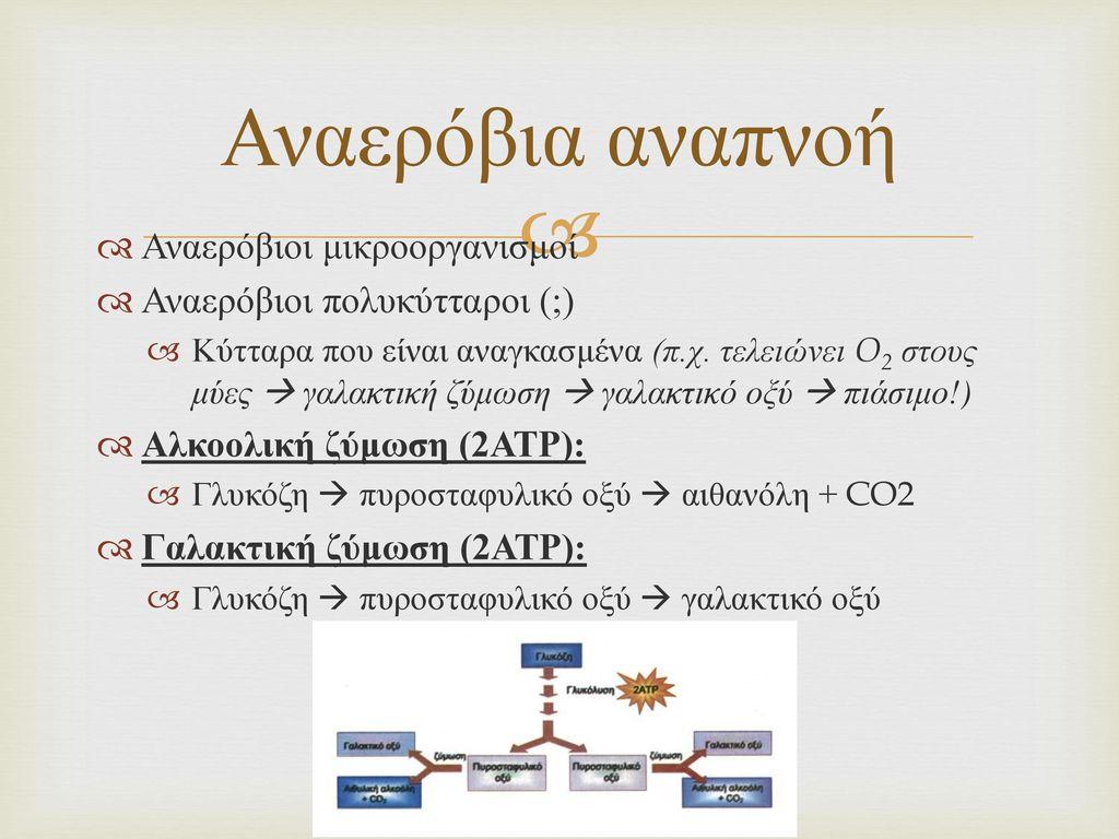 Αναερόβια αναπνοή Αναερόβιοι μικροοργανισμοί
