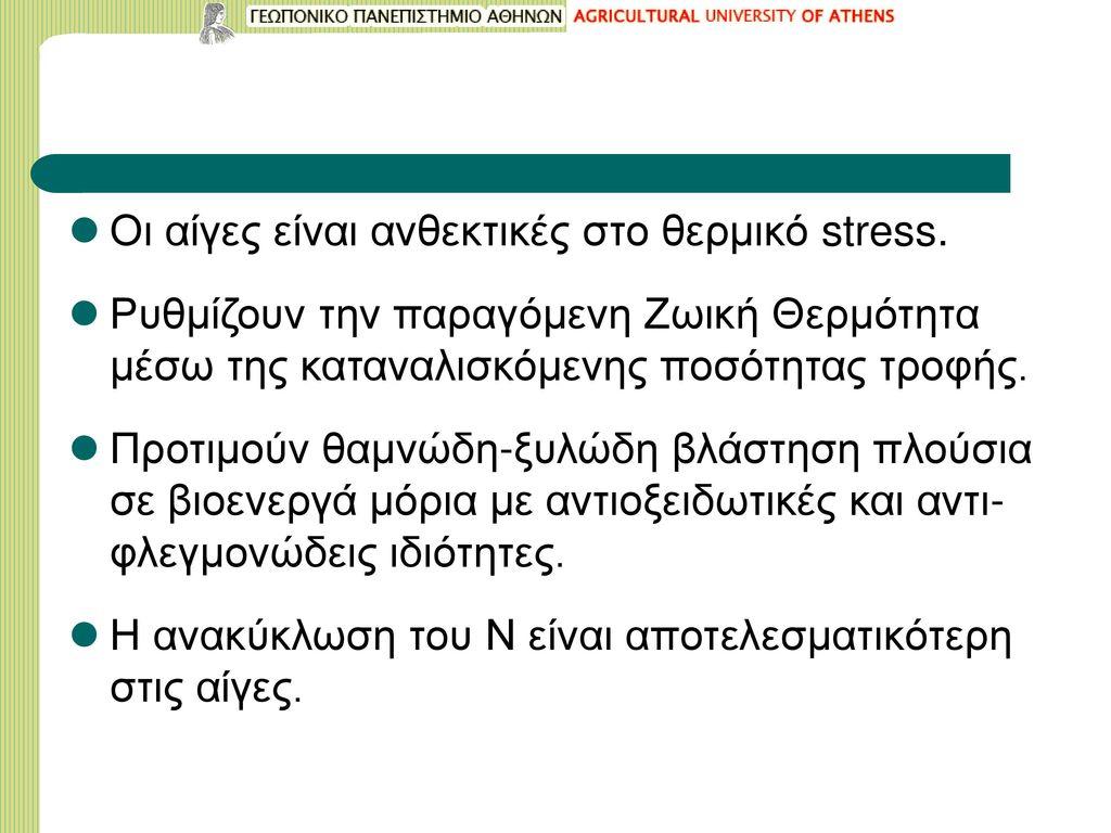 Οι αίγες είναι ανθεκτικές στο θερμικό stress.