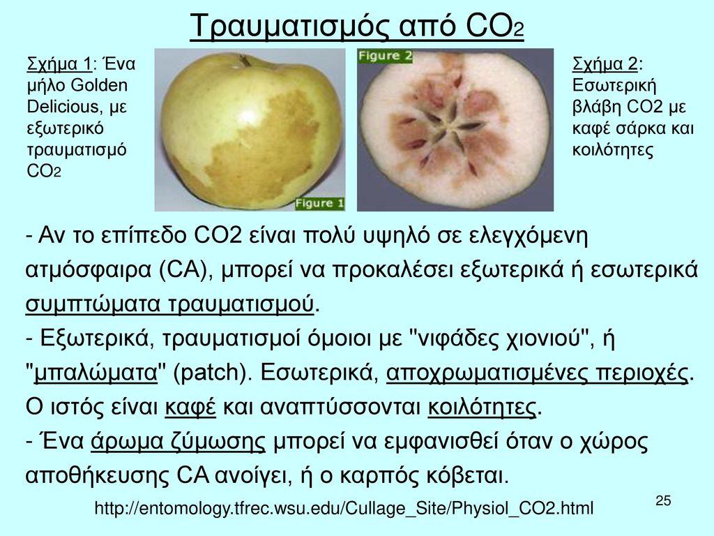 Τραυματισμός από CO2 Σχήμα 1: Ένα μήλο Golden Delicious, με εξωτερικό τραυματισμό CO2. Σχήμα 2: Εσωτερική βλάβη CO2 με καφέ σάρκα και κοιλότητες.