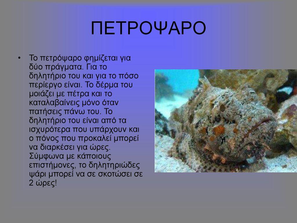 ΠΕΤΡΟΨΑΡΟ