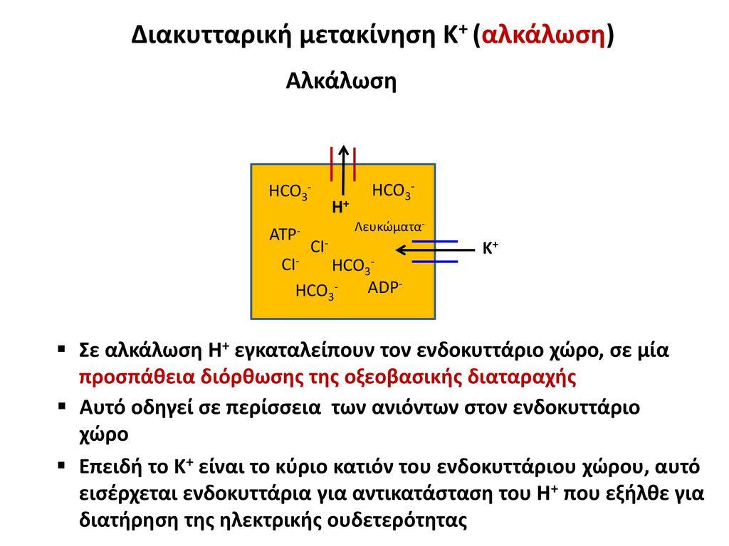 Διακυτταρική μετακίνηση Κ+ (αλκάλωση)