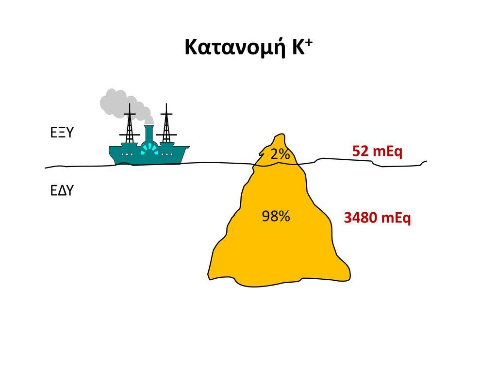 Κατανομή Κ+ ΕΞΥ 2% 52 mEq ΕΔΥ 98% 3480 mEq