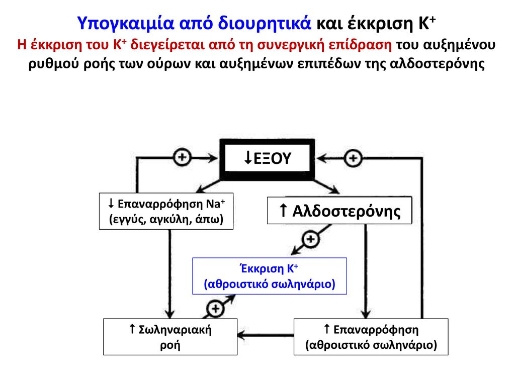 Υπογκαιμία από διουρητικά και έκκριση Κ+
