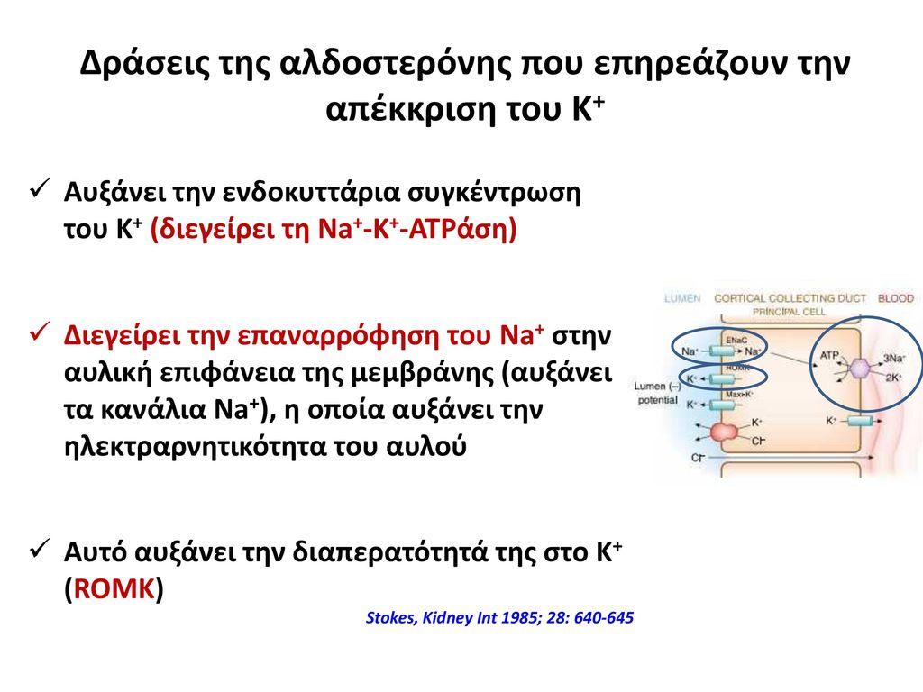 Δράσεις της αλδοστερόνης που επηρεάζουν την απέκκριση του Κ+