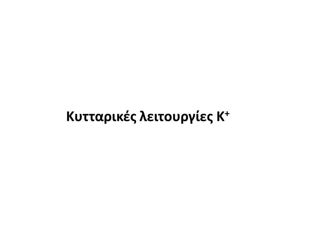 Κυτταρικές λειτουργίες K+