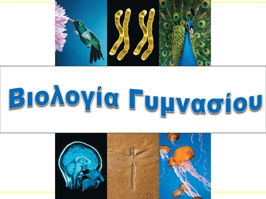 Βιολογία Γυμνασίου