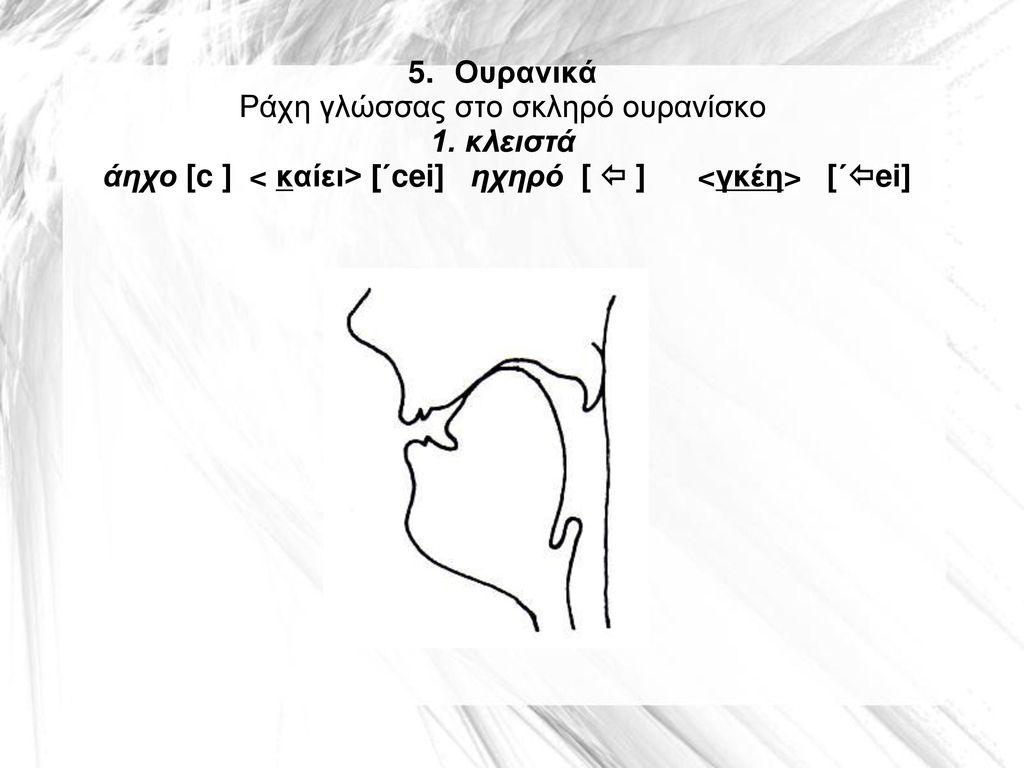 5. Ουρανικά Ράχη γλώσσας στο σκληρό ουρανίσκο 1