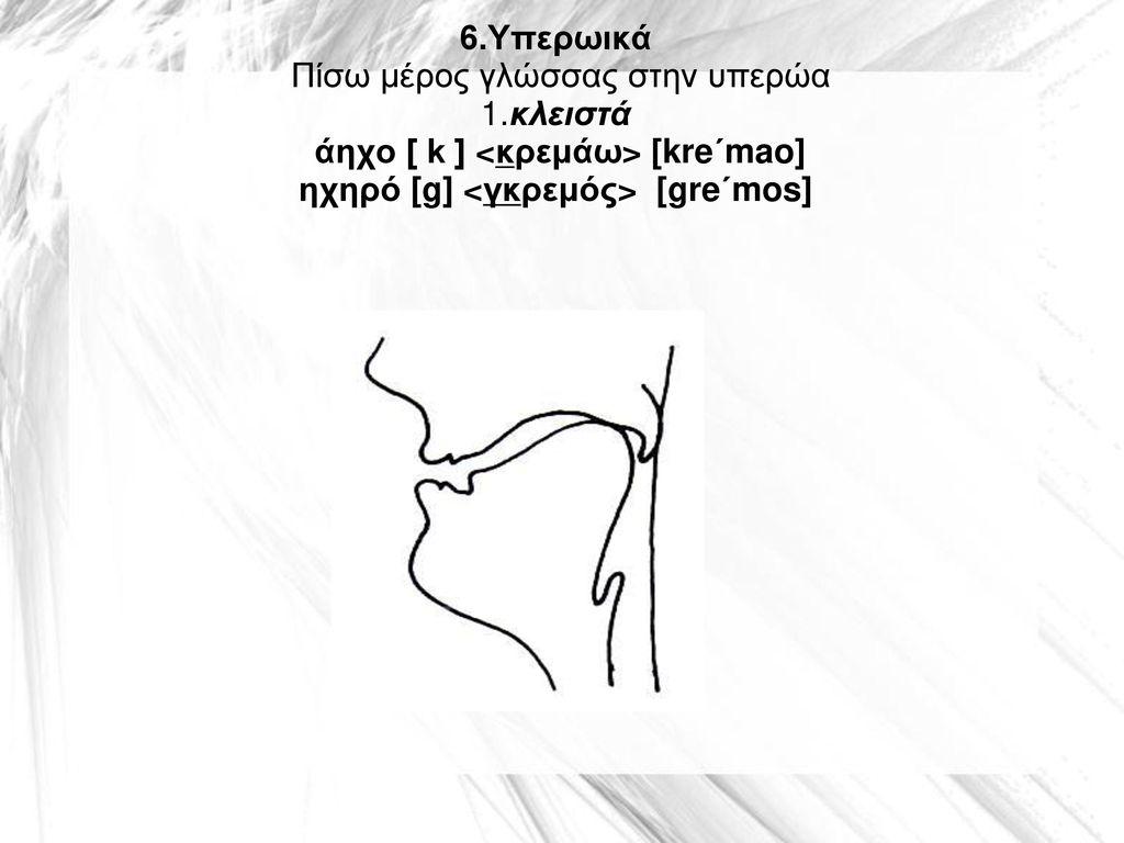 6. Υπερωικά Πίσω μέρος γλώσσας στην υπερώα 1