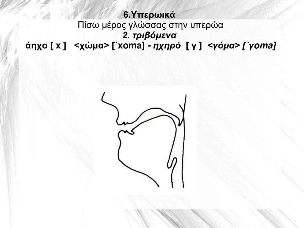 6. Υπερωικά Πίσω μέρος γλώσσας στην υπερώα 2