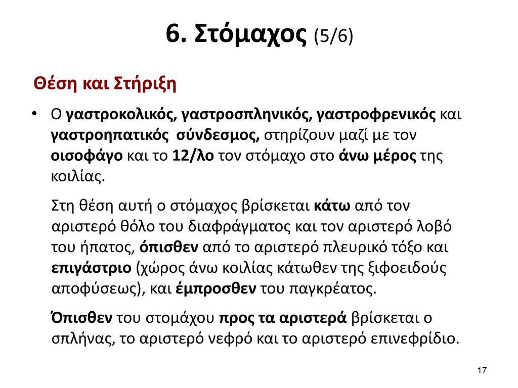 6. Στόμαχος (6/6) Αγγεία - Νεύρα