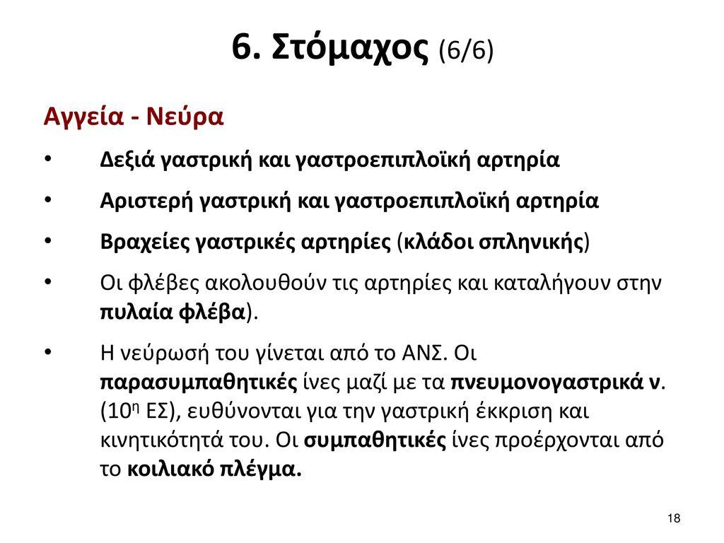7. Λεπτό έντερο (1/7) Αποτελείται από 3 τμήματα: