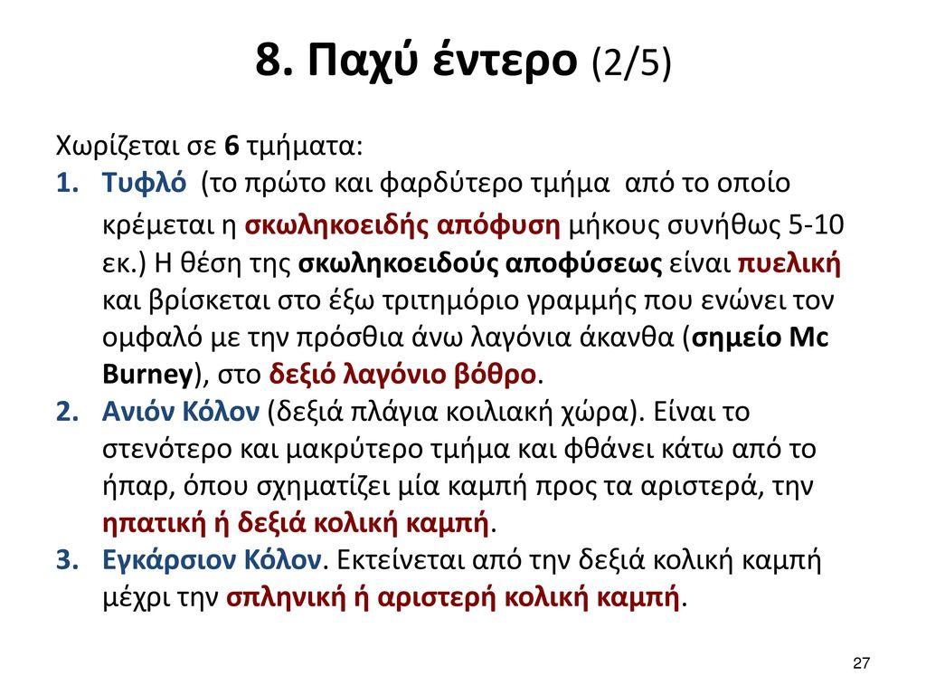 8. Παχύ έντερο (3/5) Χωρίζεται σε 6 τμήματα: