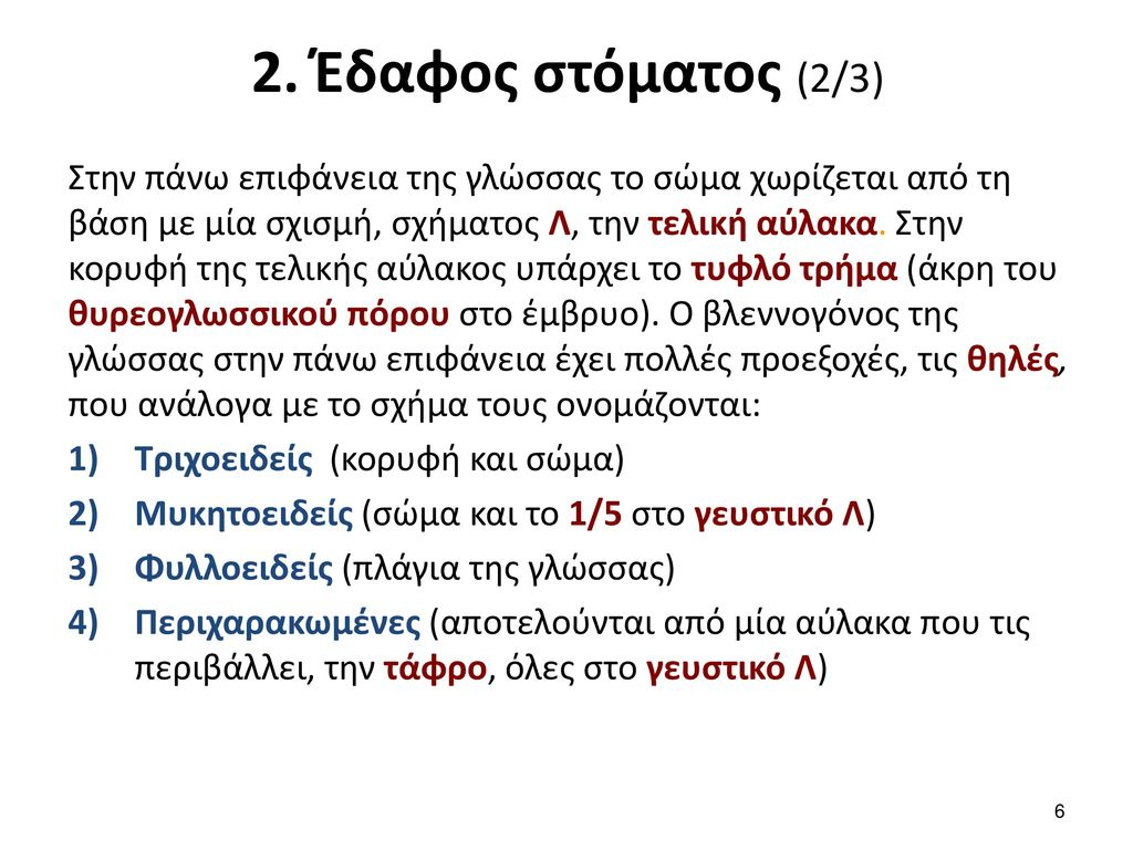 2. Έδαφος στόματος (3/3)