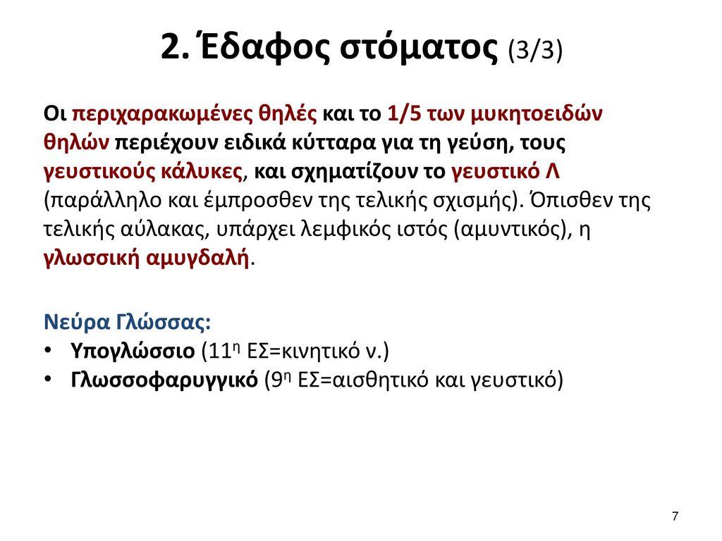 3. Οροφή στόματος (Υπερώα)