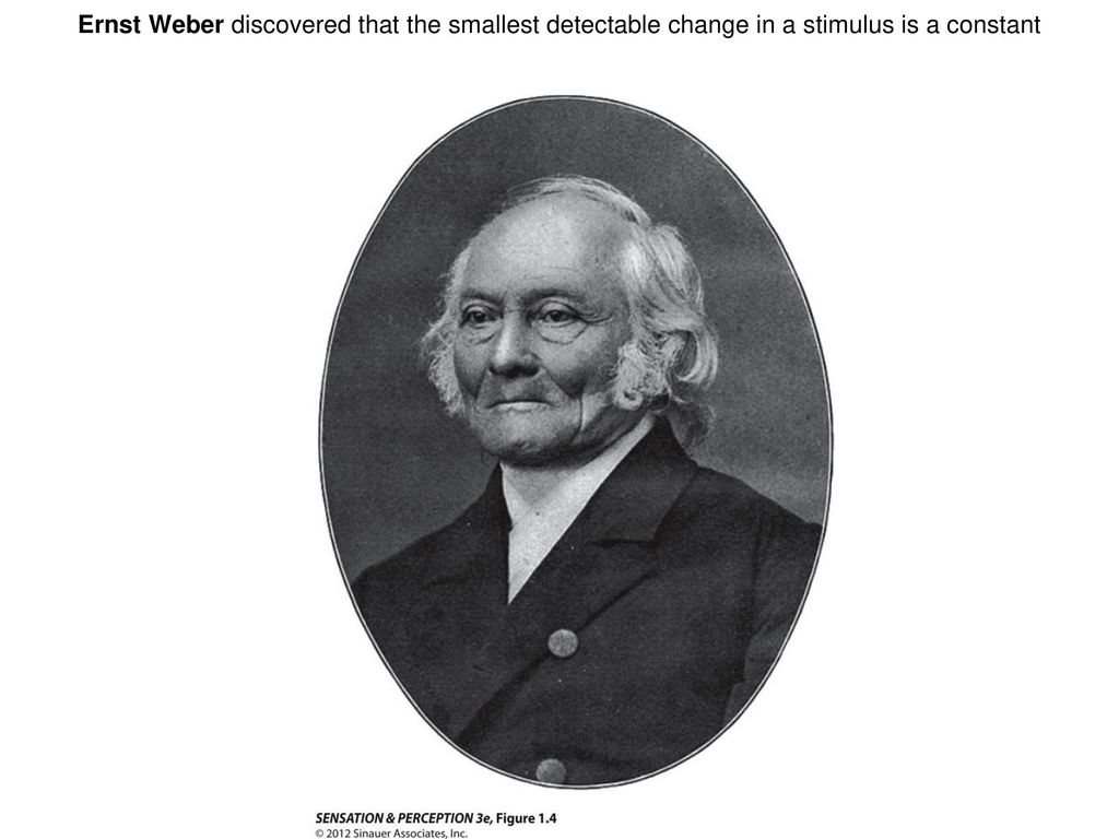 Ernst Weber discovered that the smallest detectable change in a stimulus is a constant