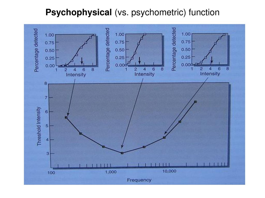 Psychophysical (vs. psychometric) function