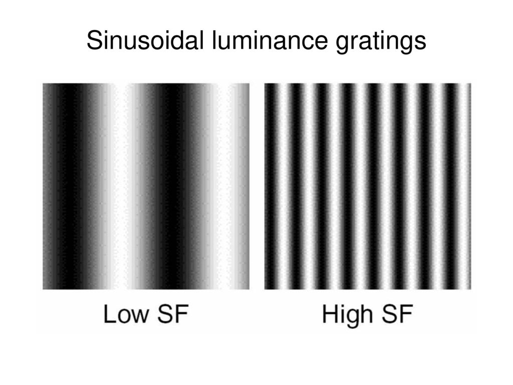 Sinusoidal luminance gratings
