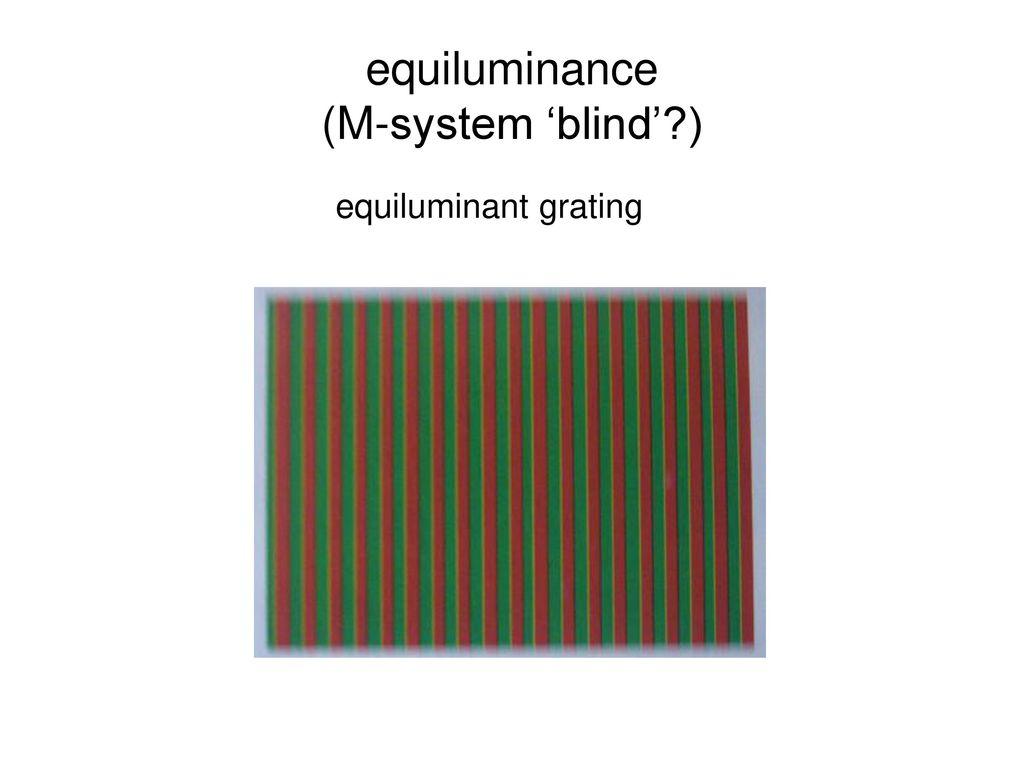 equiluminance (M-system 'blind' )