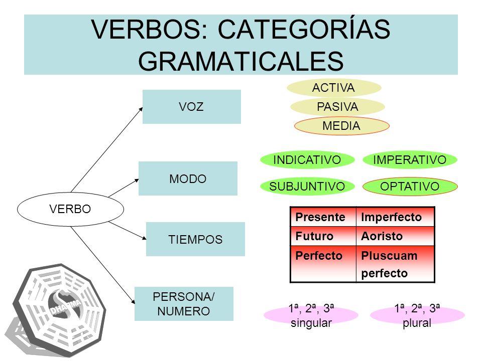 VERBOS: CATEGORÍAS GRAMATICALES