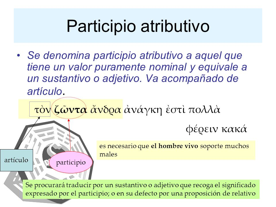 Participio atributivo