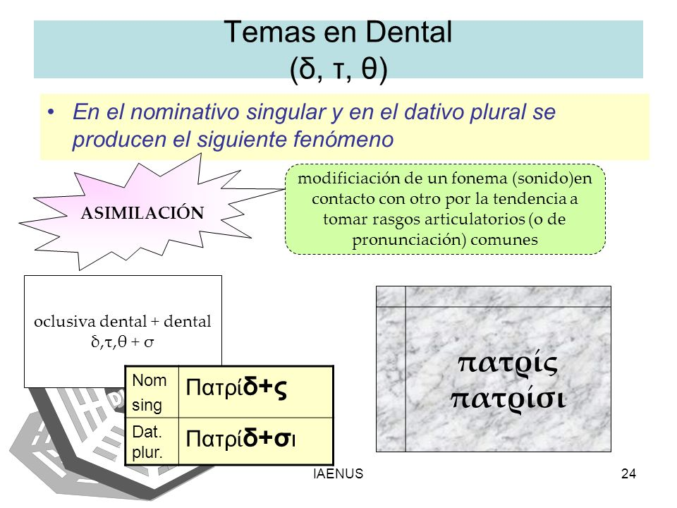 oclusiva dental + dental