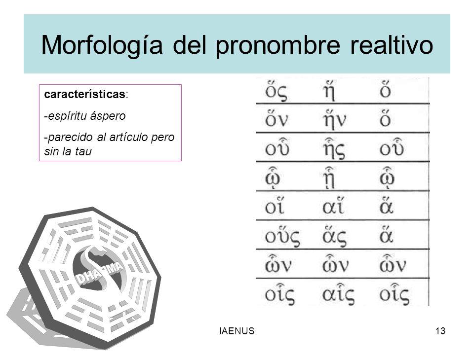Morfología del pronombre realtivo