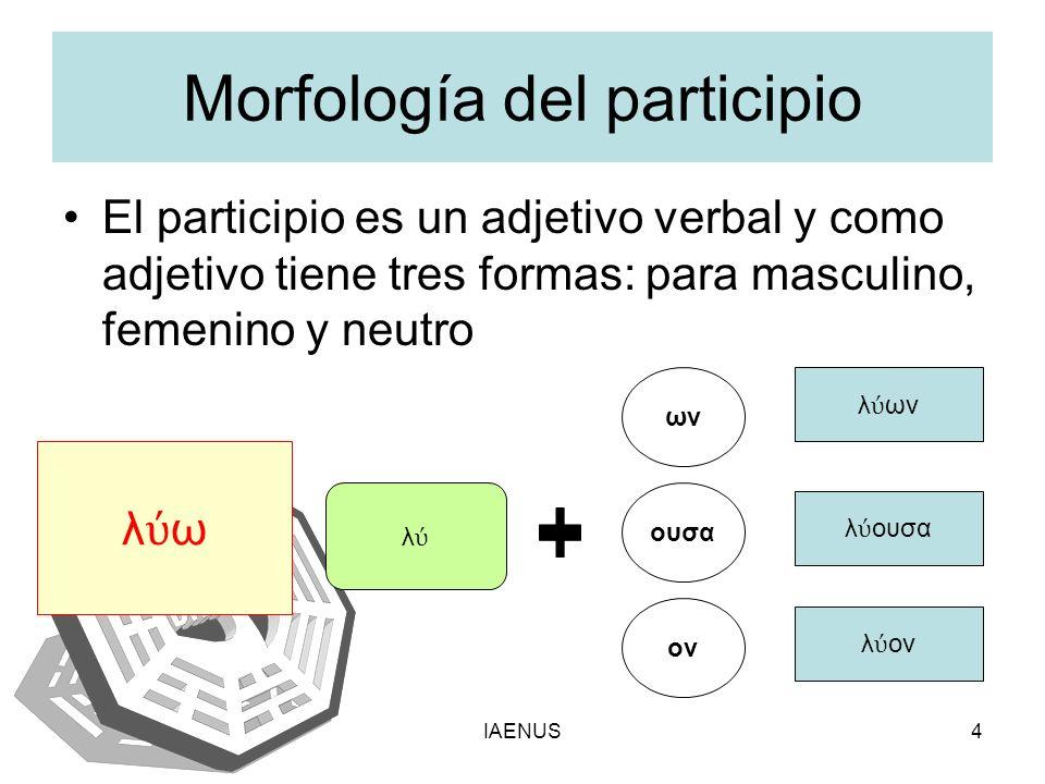 Morfología del participio