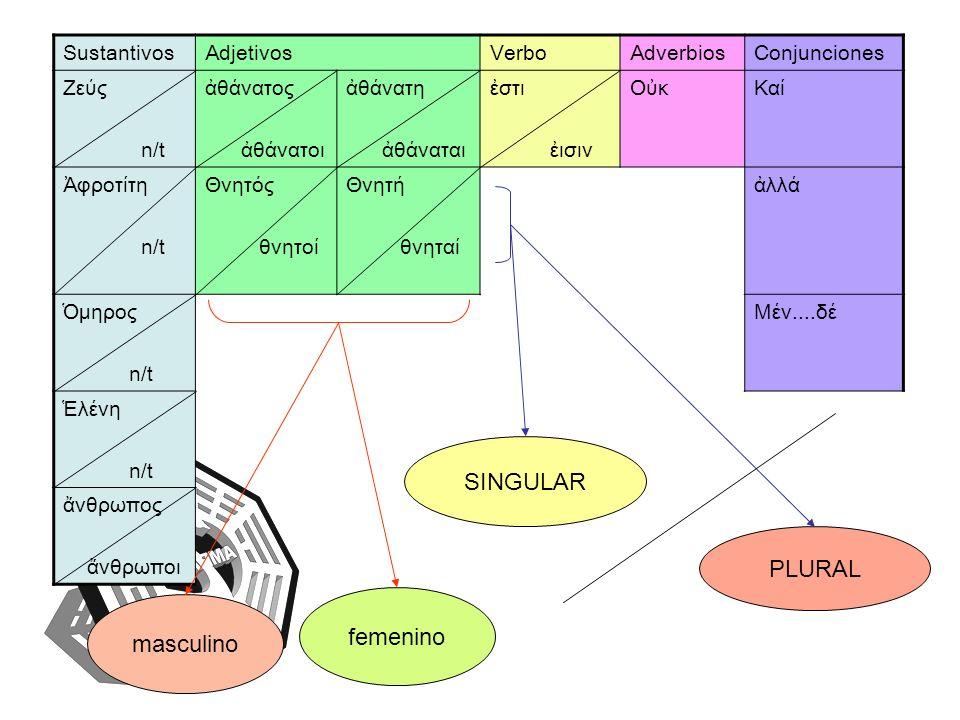 SINGULAR PLURAL femenino masculino Sustantivos Adjetivos Verbo