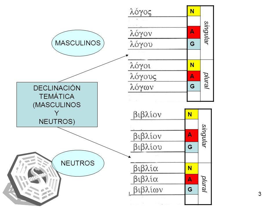 singular MASCULINOS plural singular DECLINACIÓN TEMÁTICA plural
