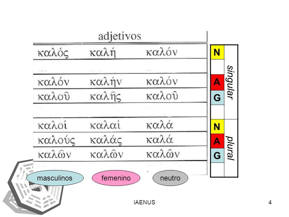 N singular A G plural masculinos femenino neutro IAENUS