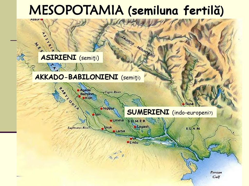 MESOPOTAMIA (semiluna fertilă)