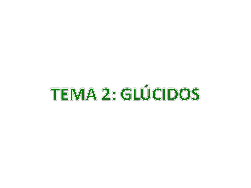 TEMA 2: GLÚCIDOS