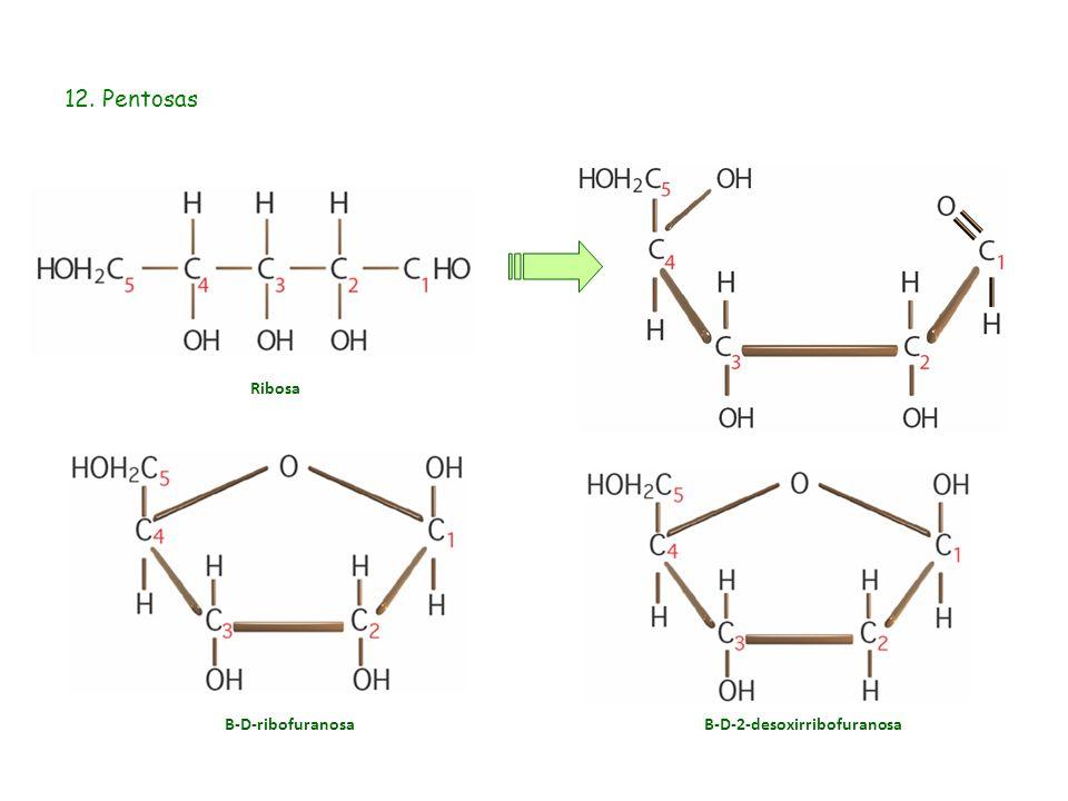 Β-D-2-desoxirribofuranosa