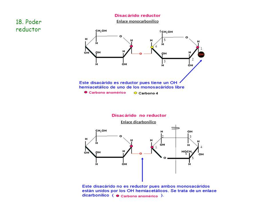 18. Poder reductor Enlace monocarbonílico Enlace dicarbonílico 6 5 4 1