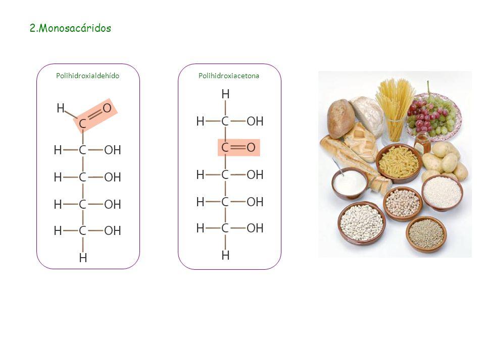 2.Monosacáridos Polihidroxialdehído Polihidroxiacetona