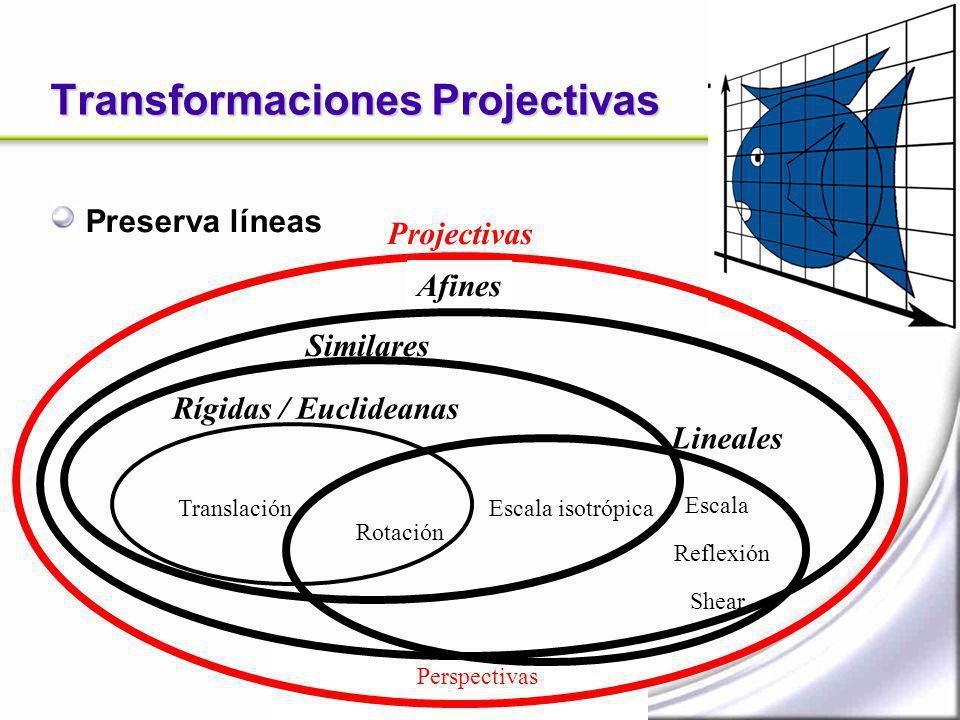 Transformaciones Projectivas