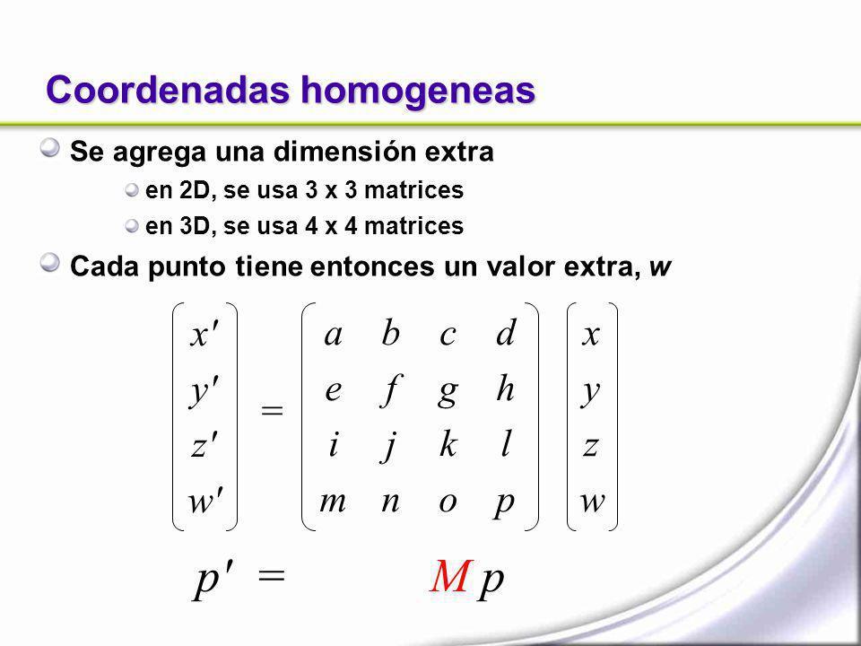 Coordenadas homogeneas