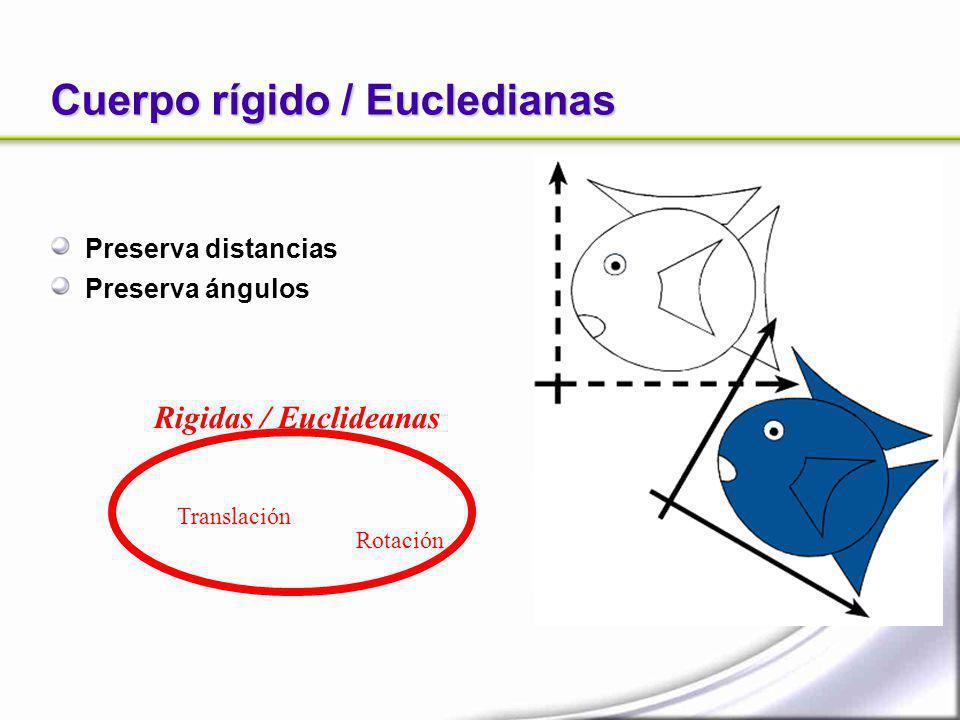 Cuerpo rígido / Eucledianas