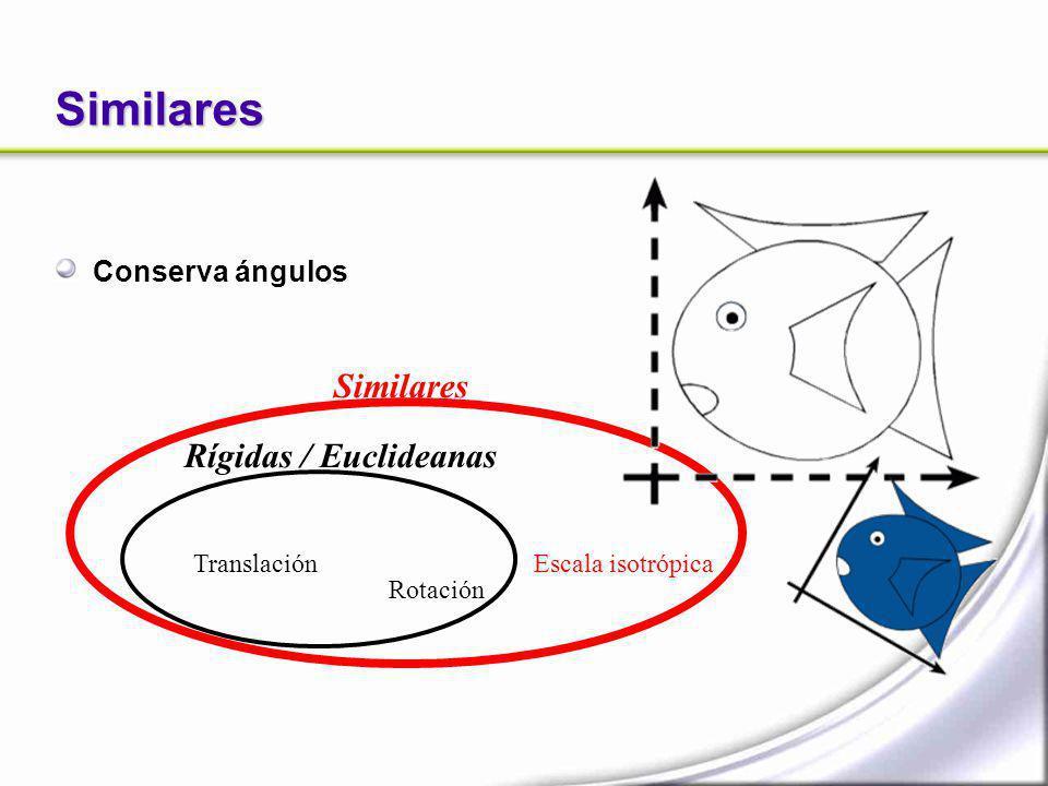 Similares Similares Rígidas / Euclideanas Conserva ángulos Translación