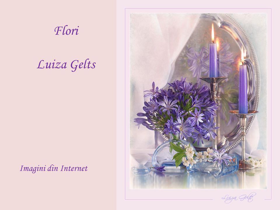 Flori Luiza Gelts Imagini din Internet