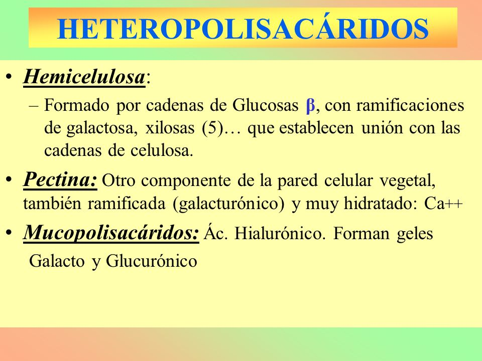 HETEROPOLISACÁRIDOS Hemicelulosa: