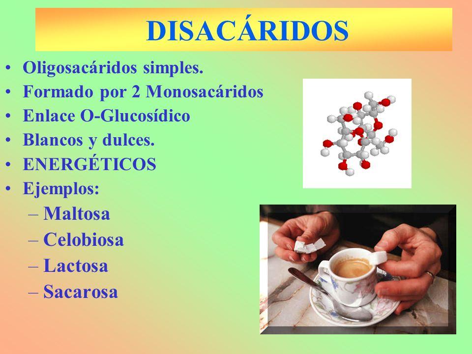 DISACÁRIDOS Maltosa Celobiosa Lactosa Sacarosa Oligosacáridos simples.