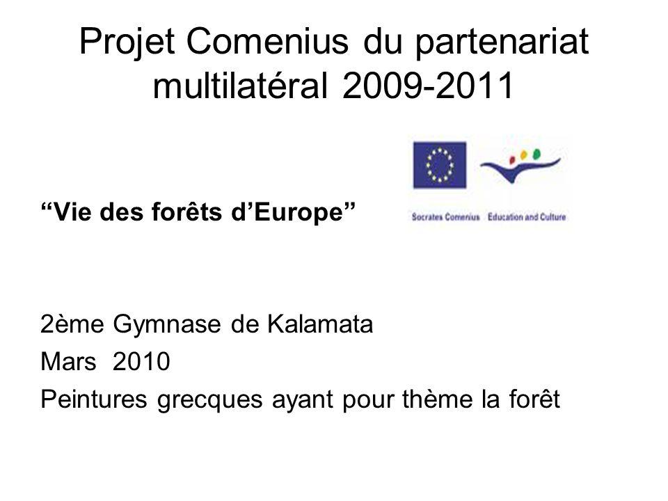Projet Comenius du partenariat multilatéral 2009-2011