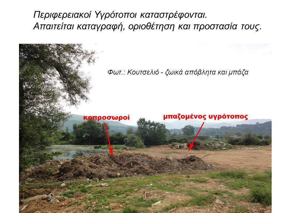 Περιφερειακοί Υγρότοποι καταστρέφονται.