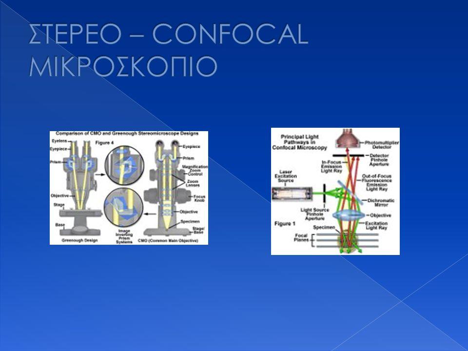 ΣΤΕΡΕΟ – CONFOCAL ΜΙΚΡΟΣΚΟΠΙΟ
