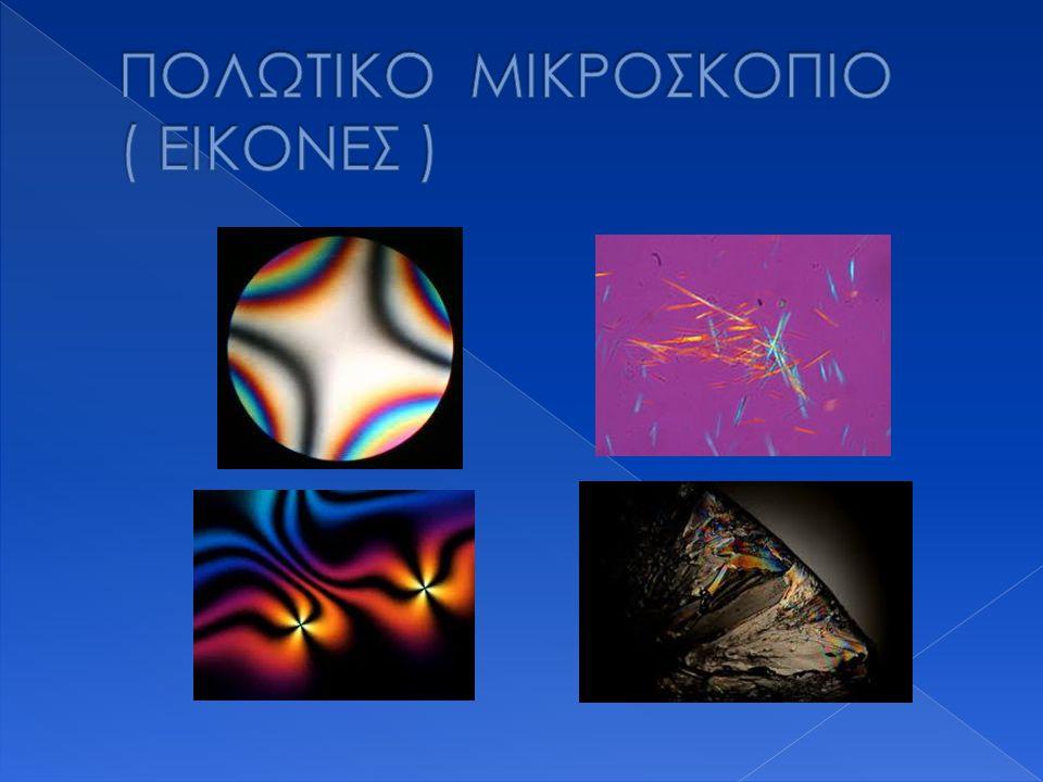 ΠΟΛΩΤΙΚΟ ΜΙΚΡΟΣΚΟΠΙΟ ( ΕΙΚΟΝΕΣ )