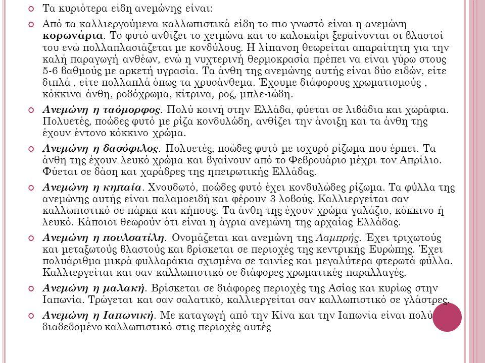 Τα κυριότερα είδη ανεμώνης είναι: