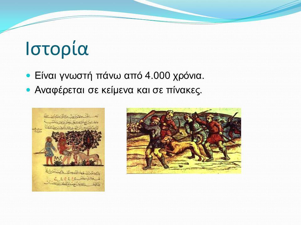 Ιστορία Είναι γνωστή πάνω από 4.000 χρόνια.