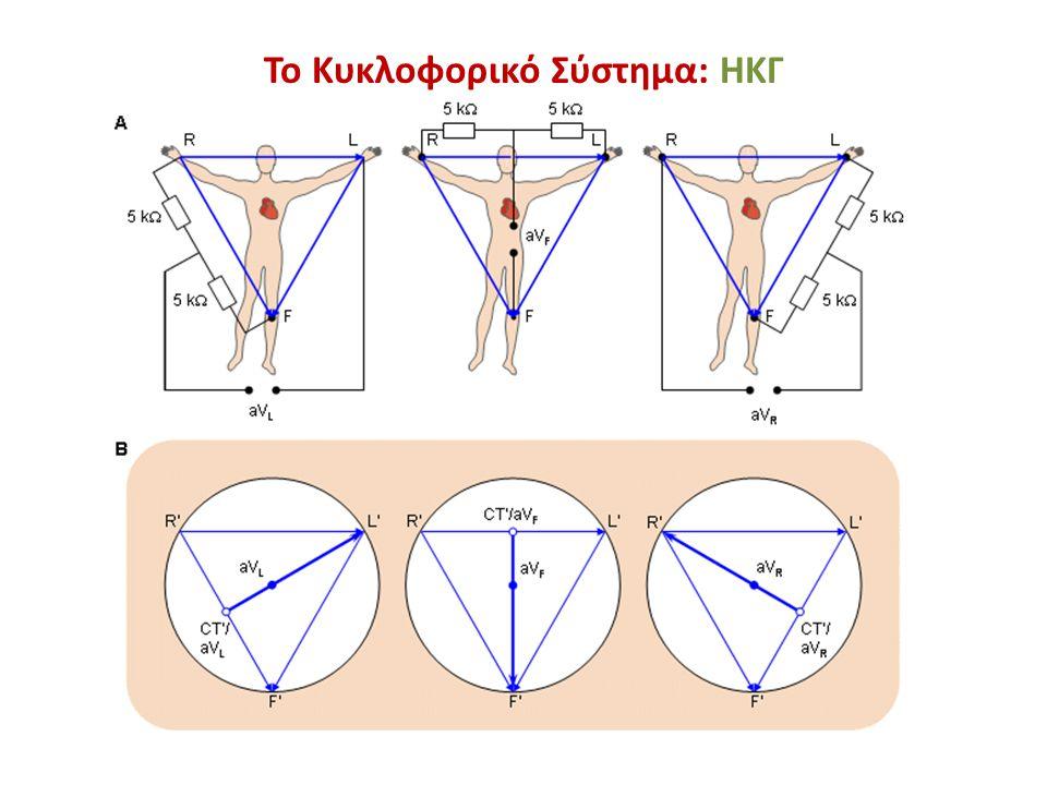 Το Κυκλοφορικό Σύστημα: ΗΚΓ